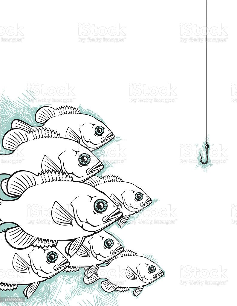 Freshwater fish anatomy - School Of Freshwater Fish Royalty Free Stock Vector Art