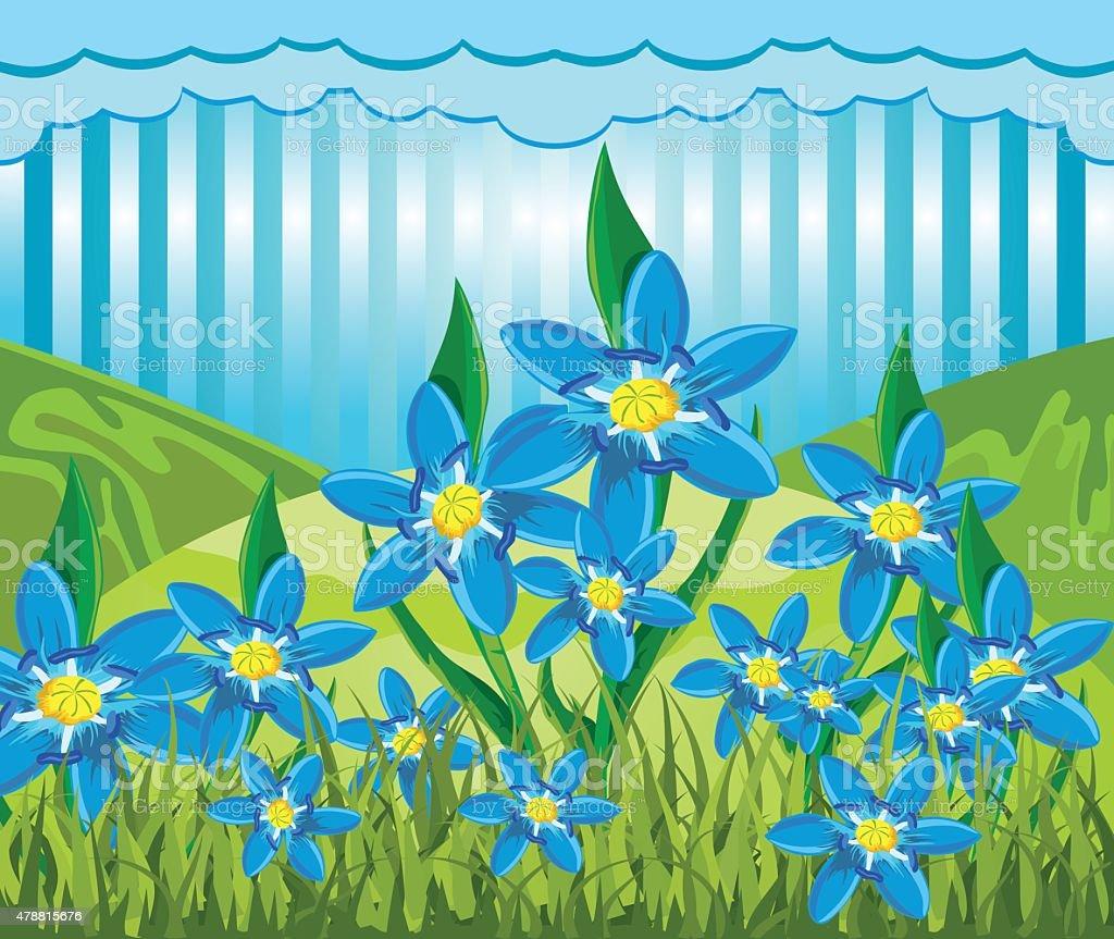 Scilla bifolia vector art illustration