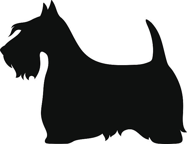 Scottish Terrier Clip Art, Vector Images & Illustrations ...