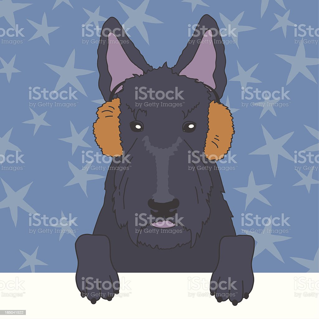 Scottish Terrier in Fur Earmuffs royalty-free stock vector art