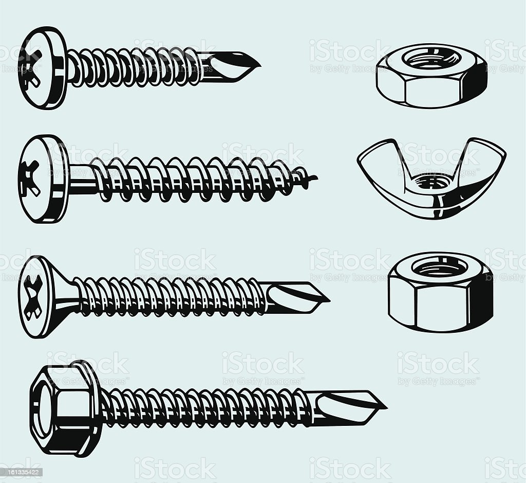 Screws and nuts vector art illustration