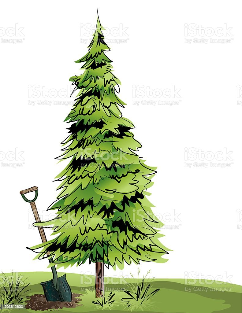 Scribbled Pine Tree With Shovel vector art illustration