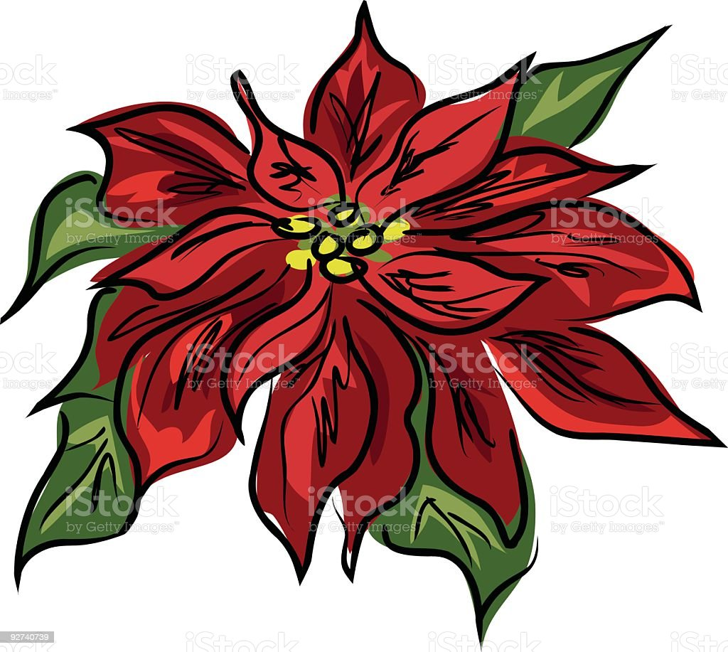 Scribbled Poinsettia Illustration royalty-free stock vector art