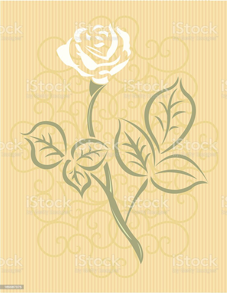 Scroll and Rose background royalty-free stock vector art