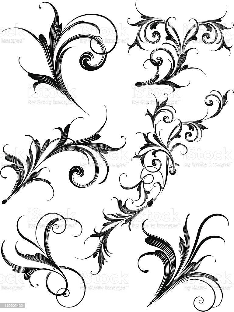 Scroll Assortment vector art illustration