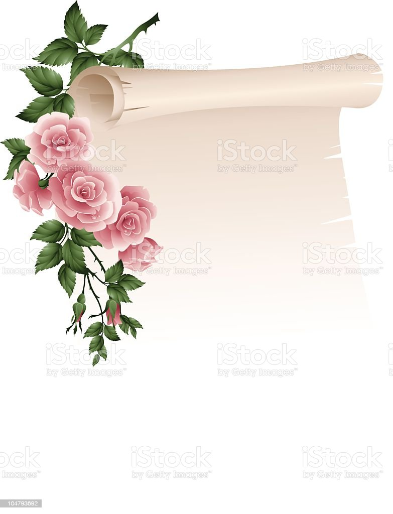 Scroll with roses fades into white background royalty-free stock vector art