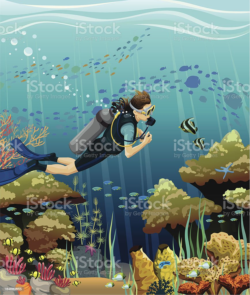 Scuba diver and coral reef royalty-free stock vector art