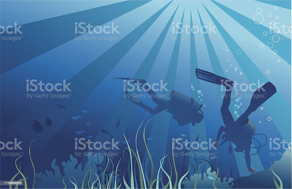 Scuba divers, underwater sea life royalty-free stock vector art