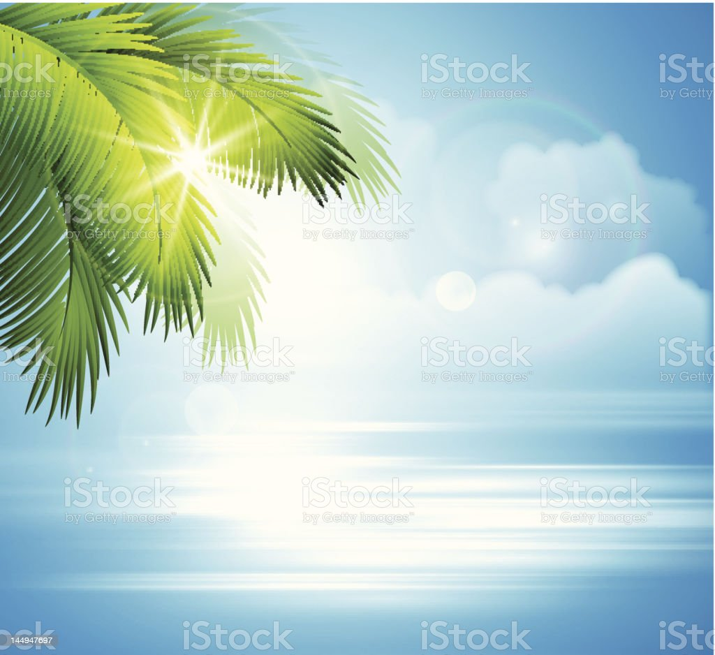 Sea and palm landscape stock photo