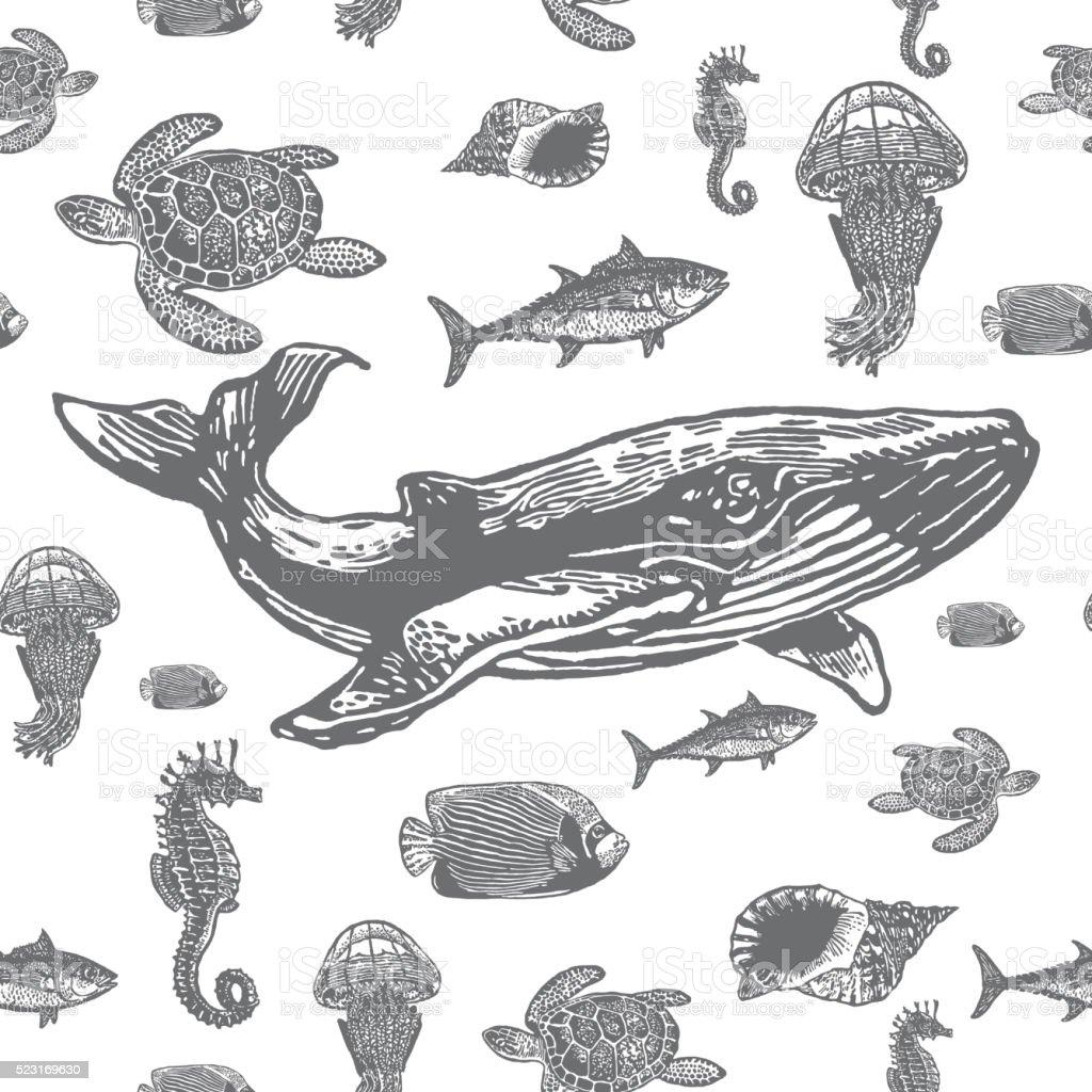Sea animals black and white seamless vector pattern. vector art illustration