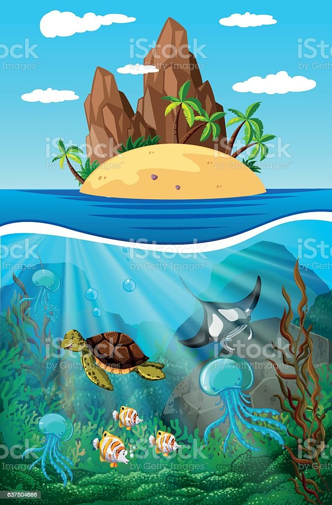 Sea animals swimming underwater illustration