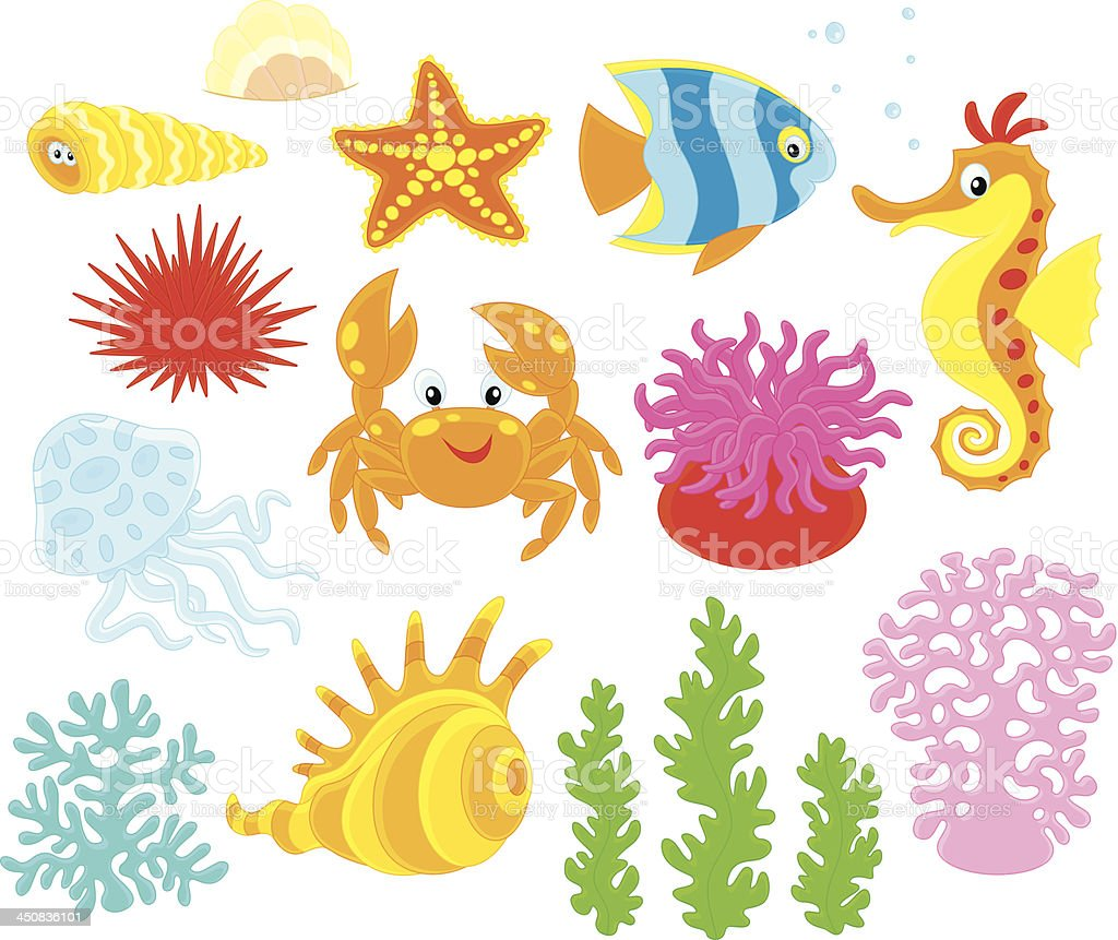 Sea animals vector art illustration