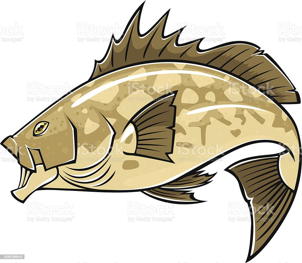 sea bass vector art illustration