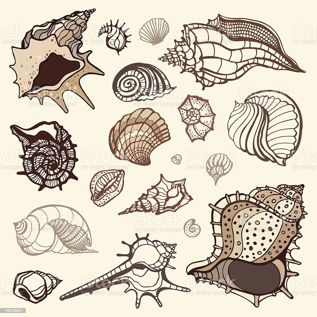 Sea collection. Hand drawn vector illustration royalty-free stock vector art