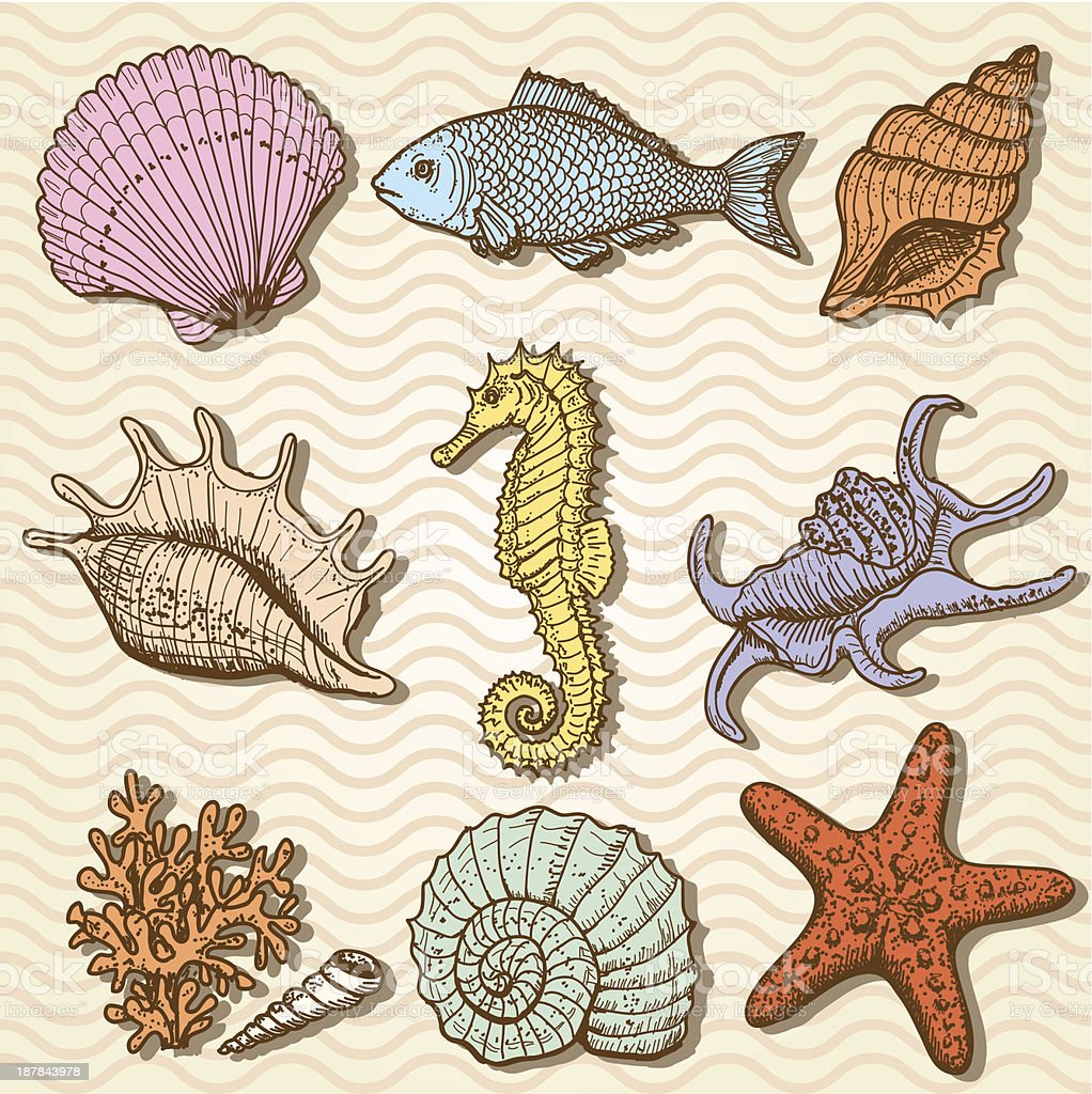 Sea collection. Original hand drawn illustration royalty-free stock vector art