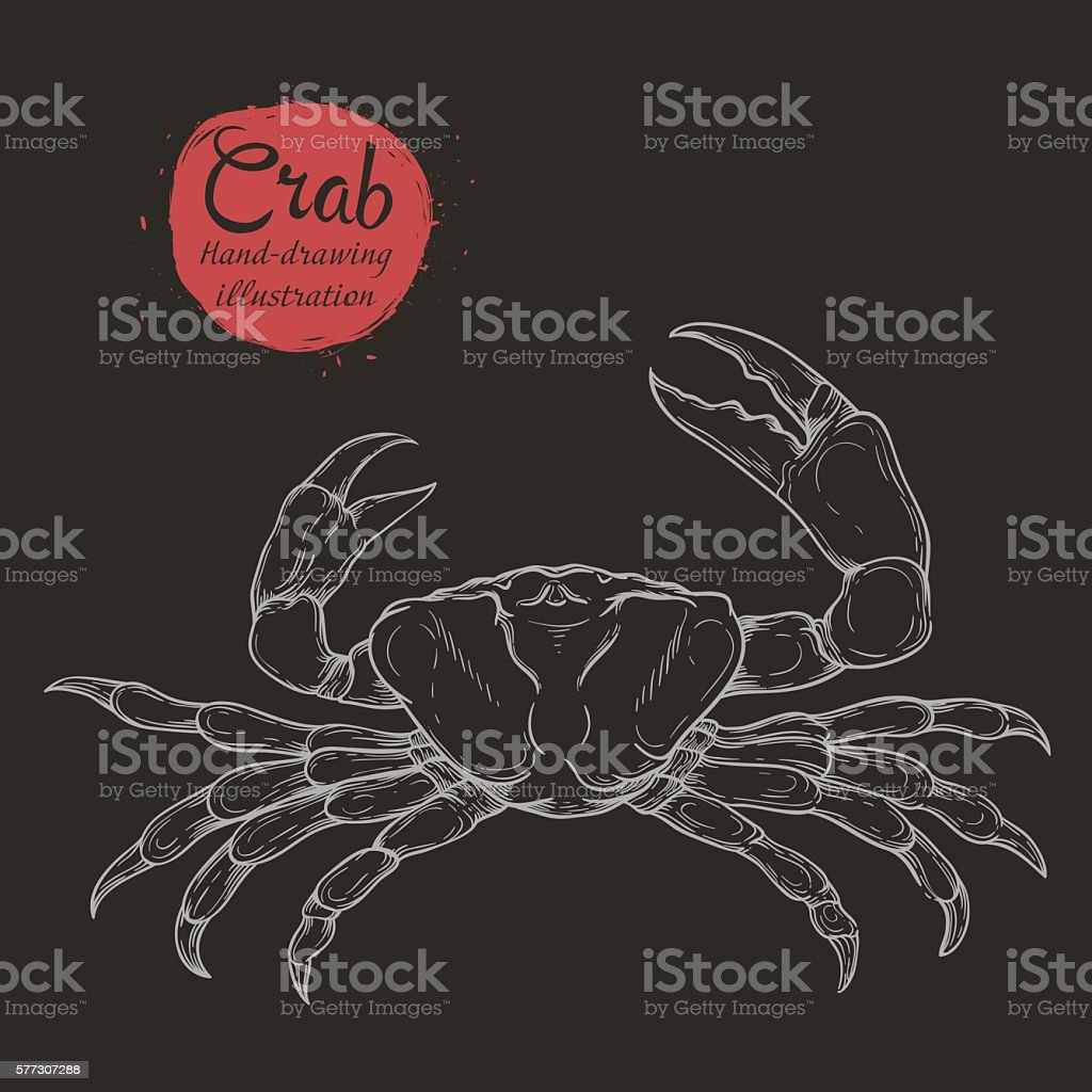 sea crab isolated on white background vector art illustration