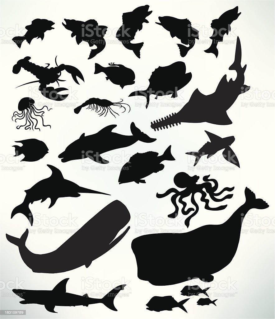 Sea Life - Fish, Shark, Whale, Lobster, Jellyfish vector art illustration