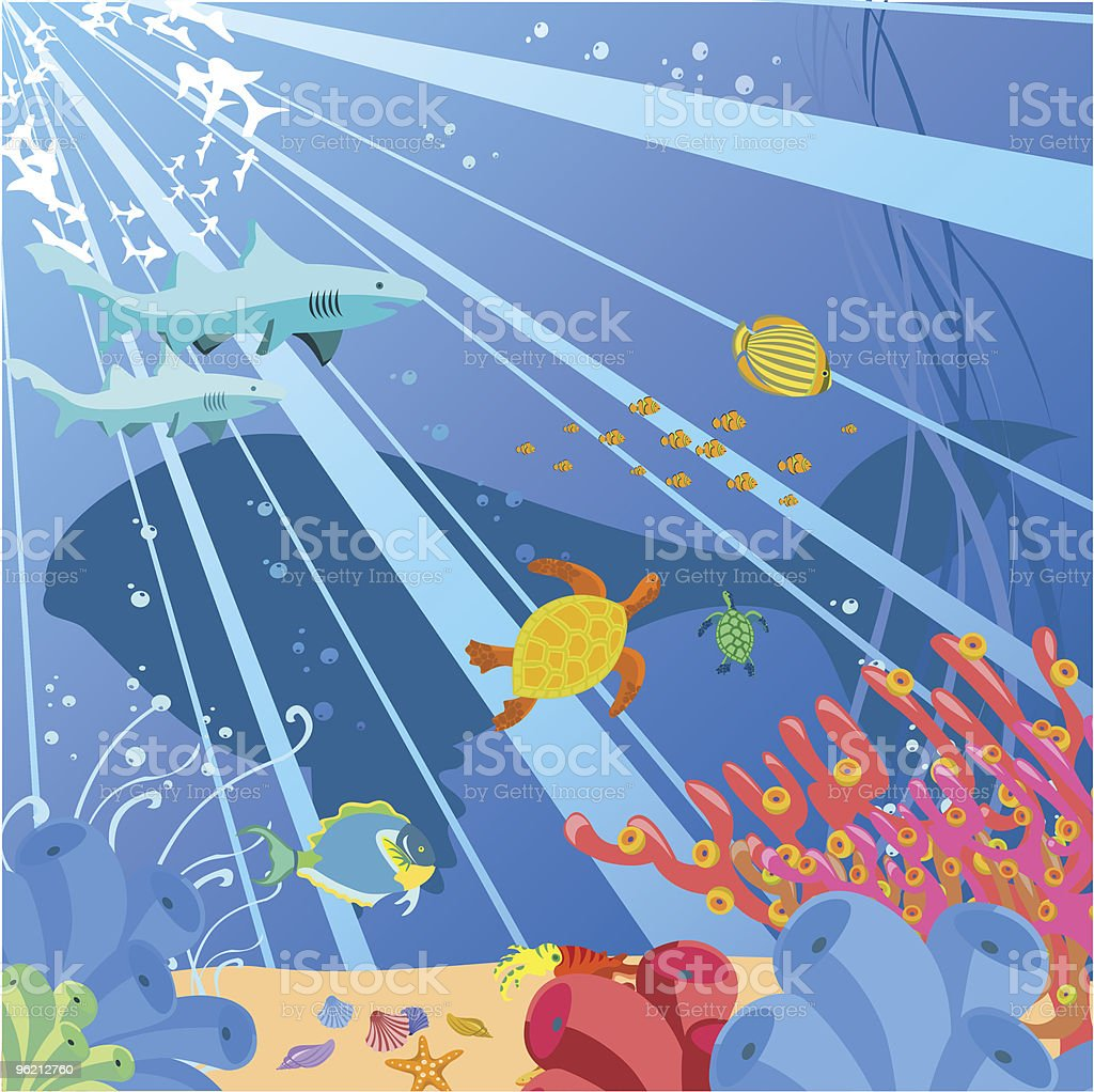 sea life royalty-free stock vector art