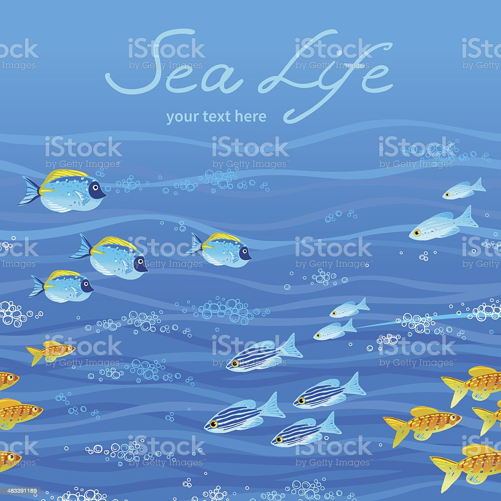 Sea pattern with tropical fishes. royalty-free stock vector art