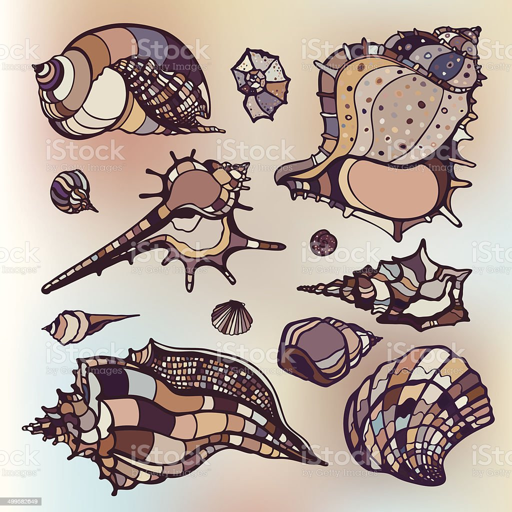Sea shells set. Blurred background. royalty-free stock vector art