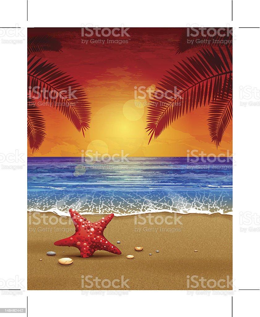 Sea sunset vector illustration stock photo