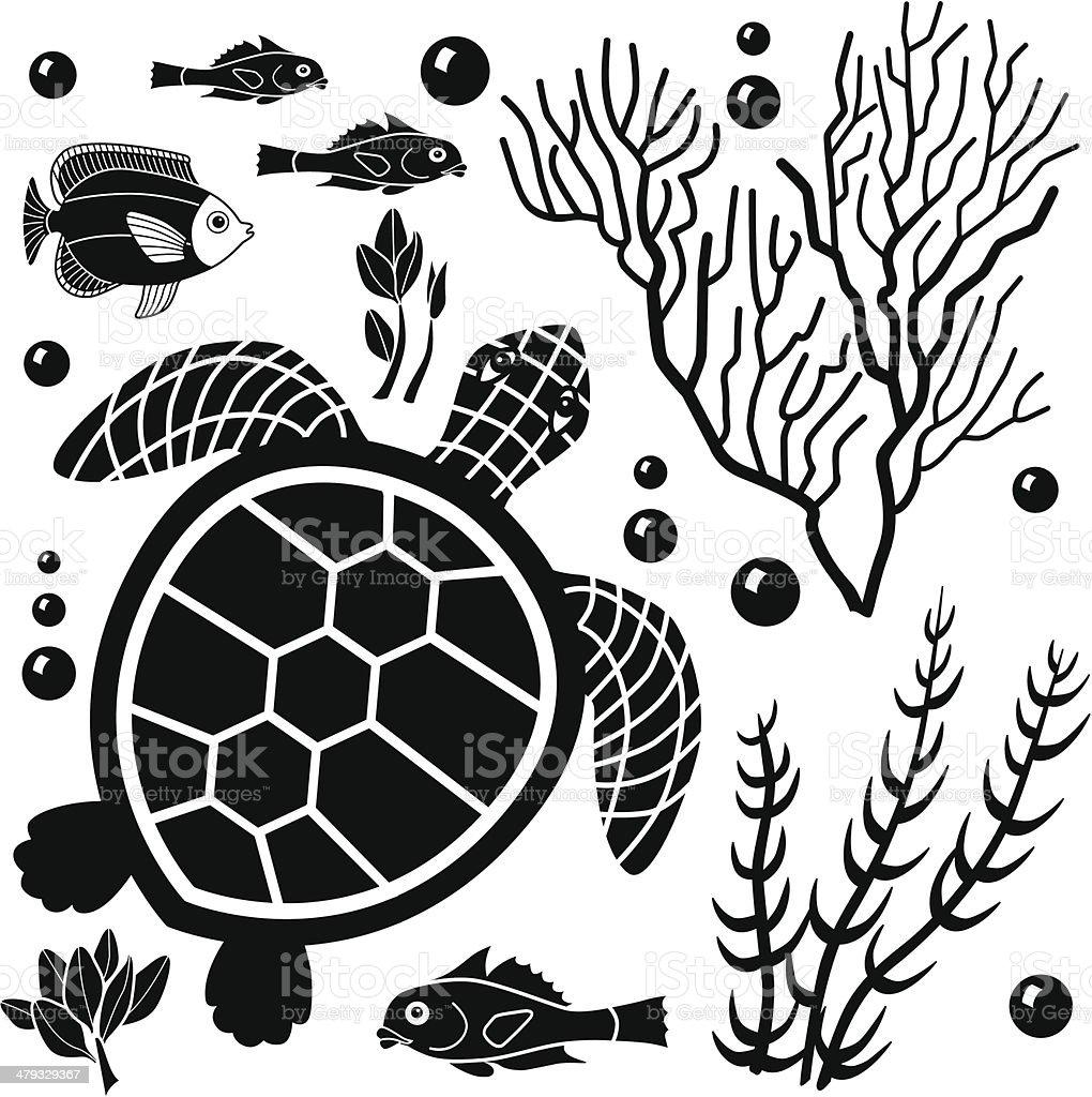 sea turtle royalty-free stock vector art