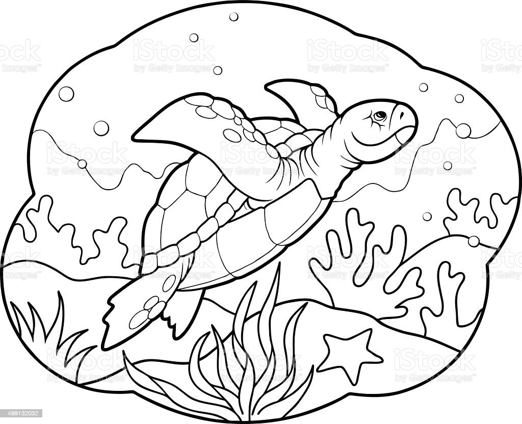 Coloring Pages Of Animals That Migrate : 바다 거북이 일러스트 istock