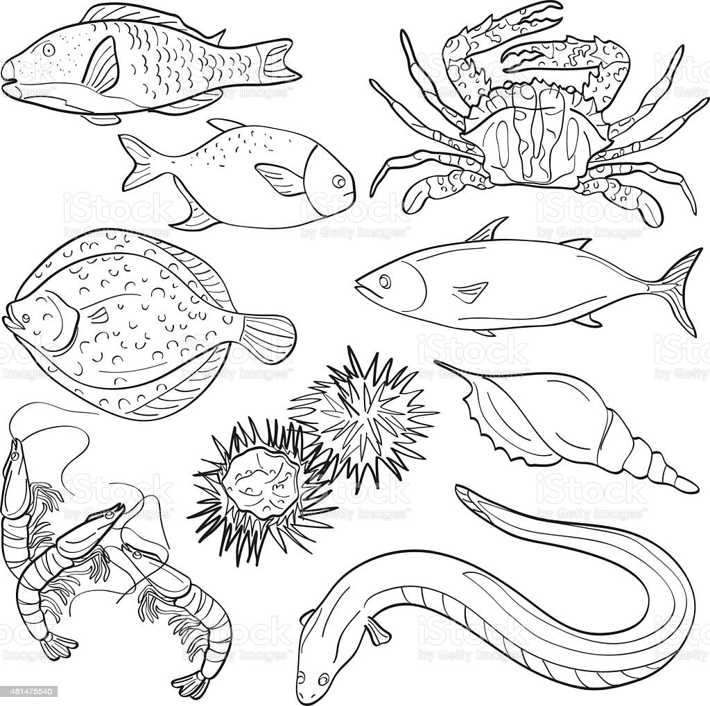 Seafood Collection vector art illustration
