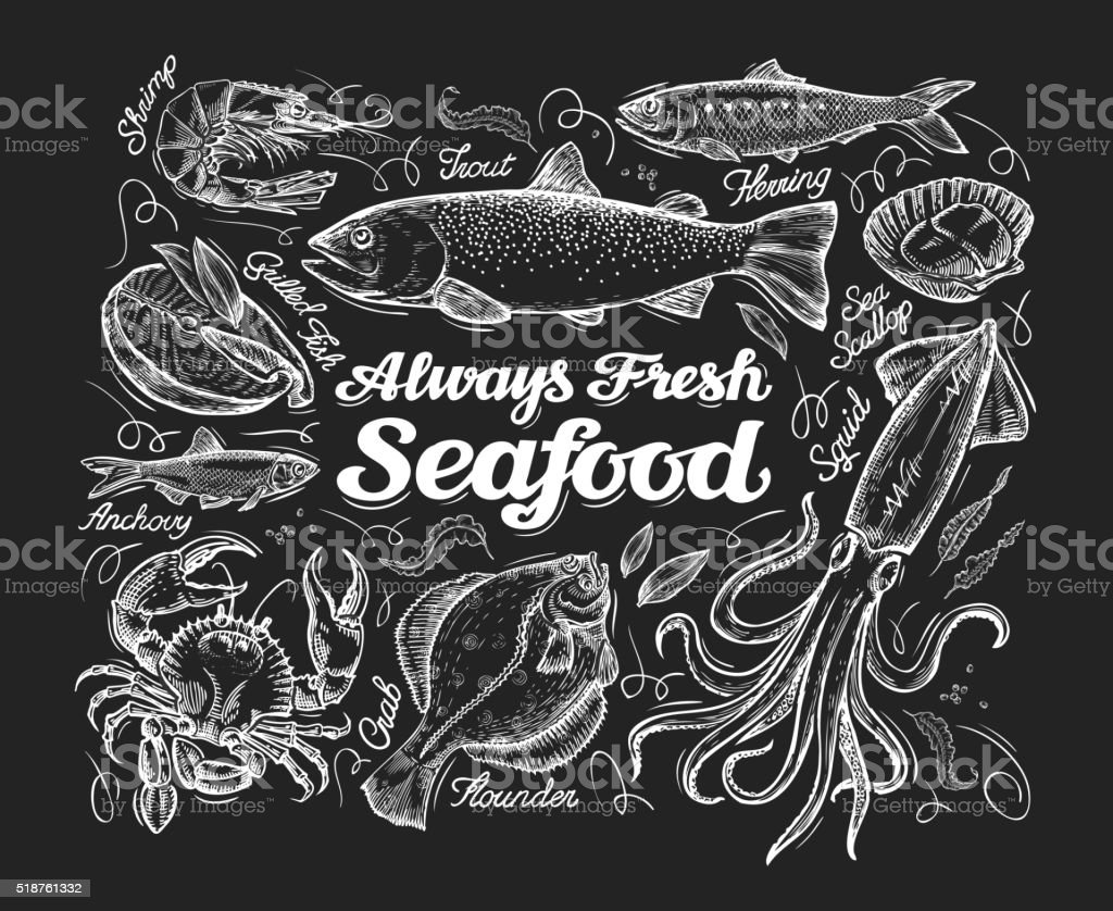 Seafood. Hand drawn sketch of a fish, trout, flounder, herring vector art illustration