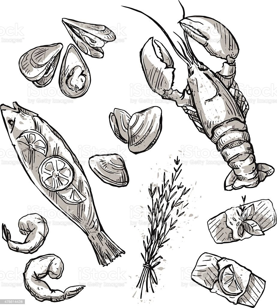 Seafood selection. Vector illustration vector art illustration