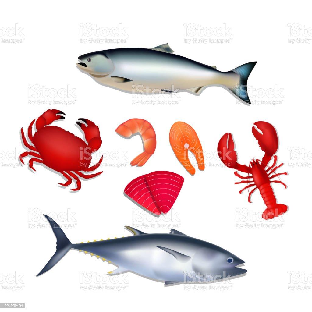 Seafood set. Salmon, tuna, crab, lobster, shrimp. vector art illustration