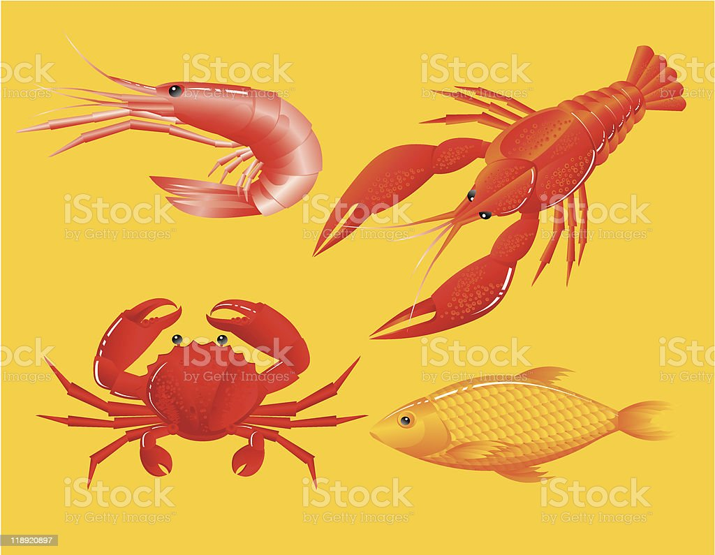 seafoods vector art illustration
