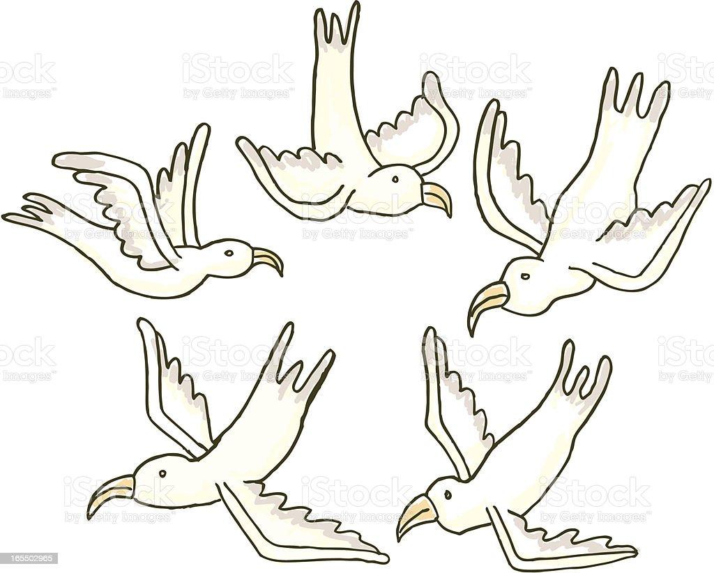 Seagull set royalty-free stock vector art