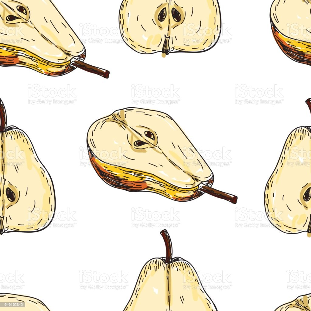 Seamles pattern vector hand made sketch illustration of engraving pear vector art illustration