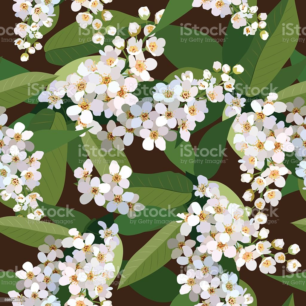 Seamless background from bunch of blossoming cherries flower vector art illustration