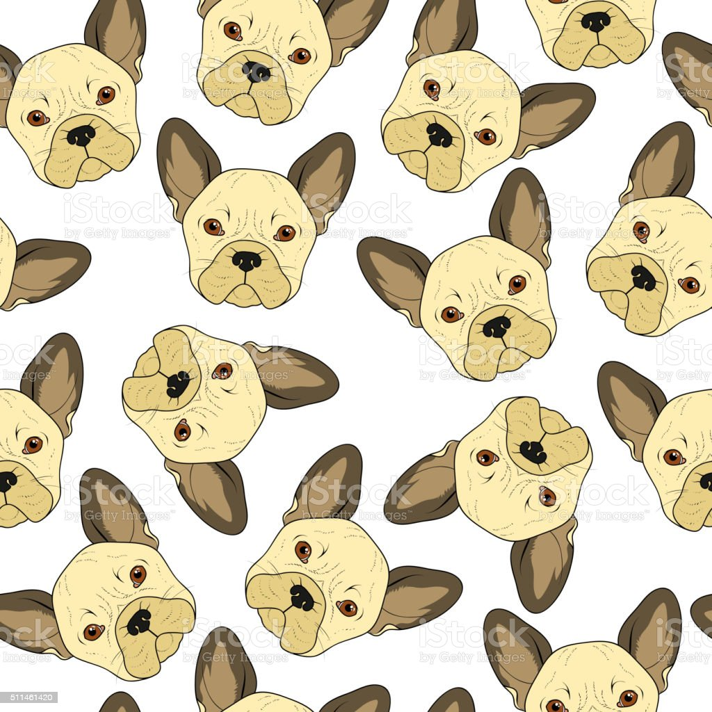 Seamless background with cute beige bulldog sketch . Realistic dog vector art illustration