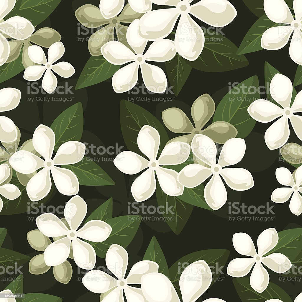 Seamless background with white flowers. Vector illustration. royalty-free stock vector art