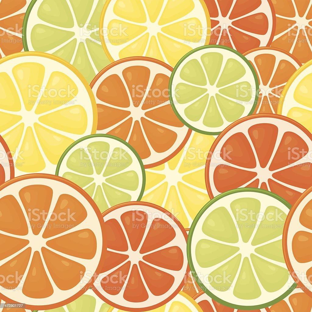 Seamless Citrus vector art illustration