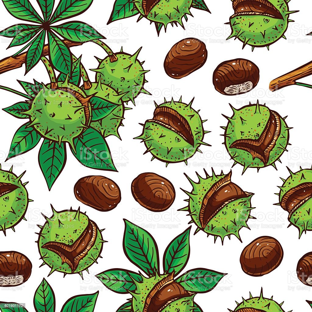 seamless colorful chestnuts vector art illustration