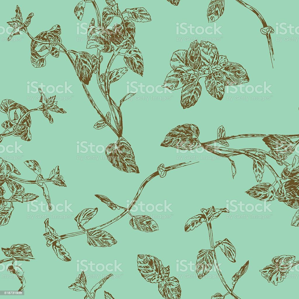 Seamless floral pattern with peppermint sprigs vector art illustration