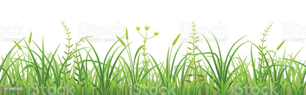 Seamless green grass vector art illustration