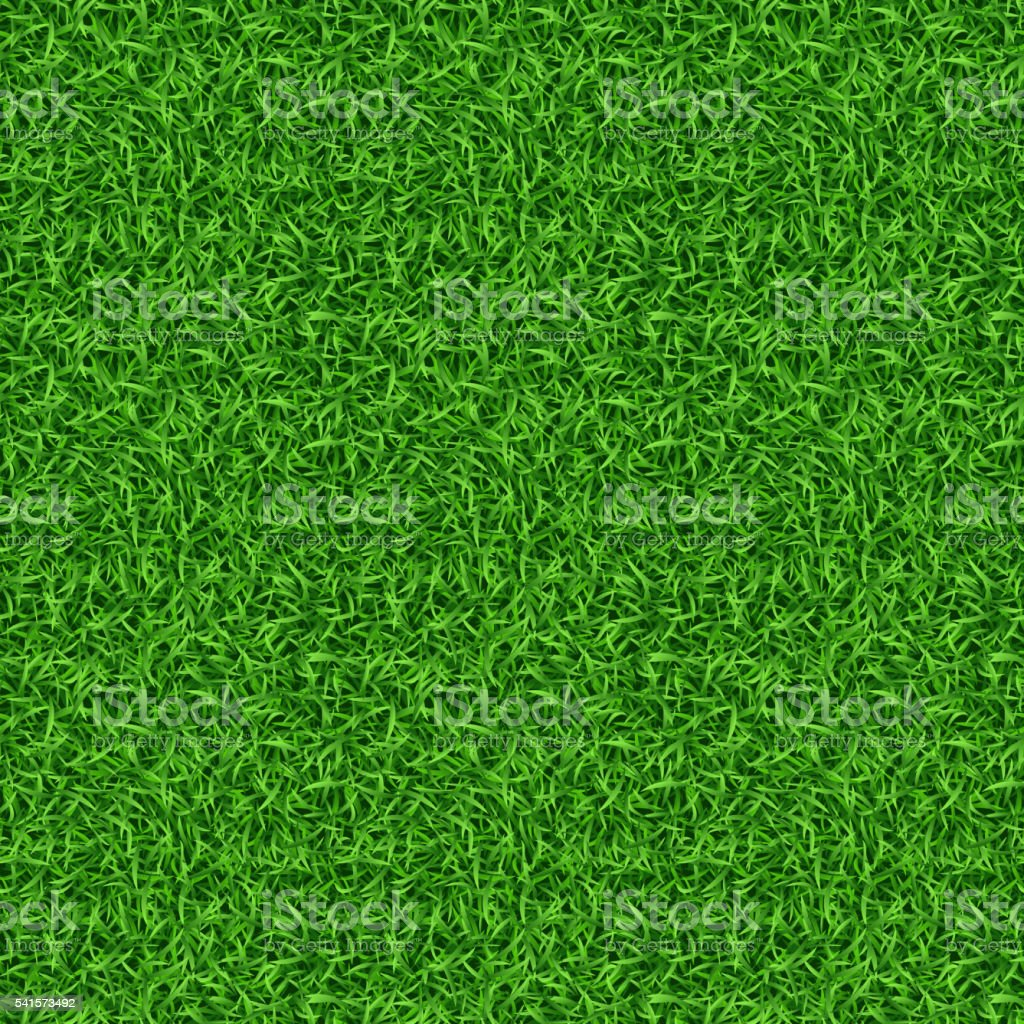 Seamless green grass vector pattern vector art illustration