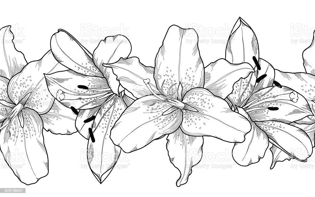 seamless horizontal frame element of gray lily  flowers. vector art illustration