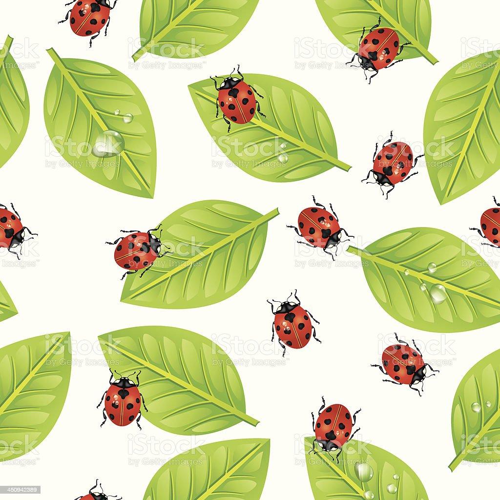 Seamless ladybug leaf Pattern royalty-free stock vector art