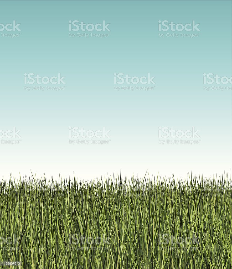 seamless long grass banner vector art illustration