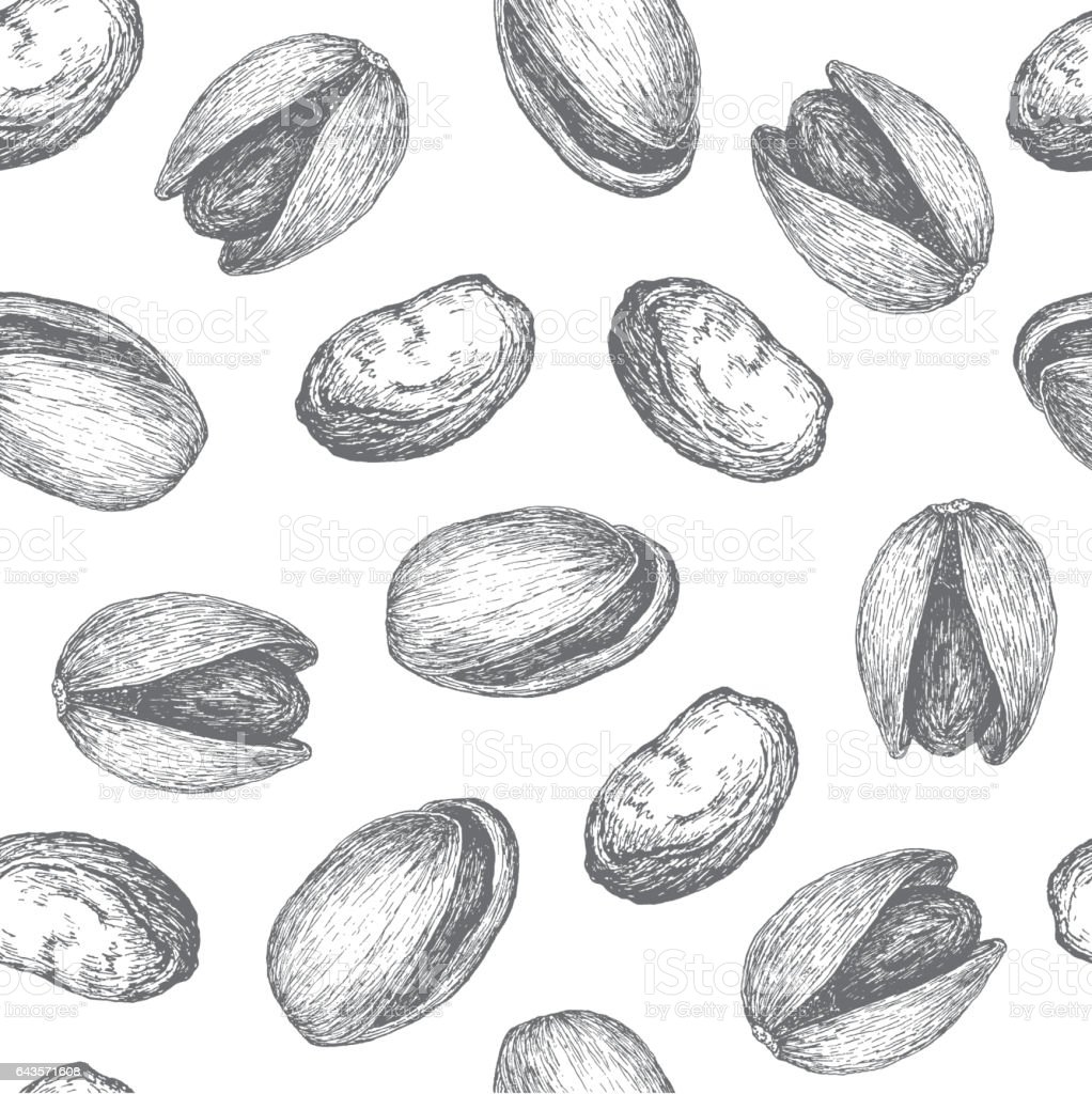 Seamless pattern design or background with pistachio. vector art illustration