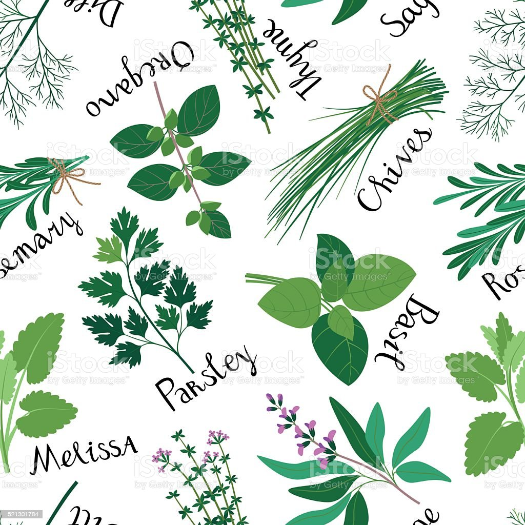 Seamless Pattern Fresh Herbs. vector art illustration