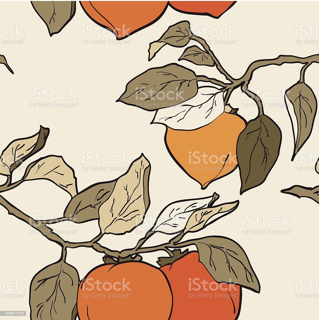 Padrão sem emendas de laranja persimmon vetor e ilustração royalty-free royalty-free