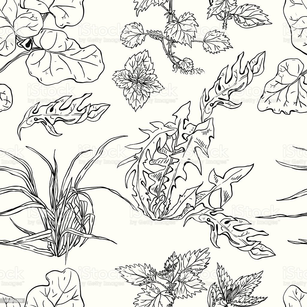 Seamless pattern herbs pen and ink vector art illustration