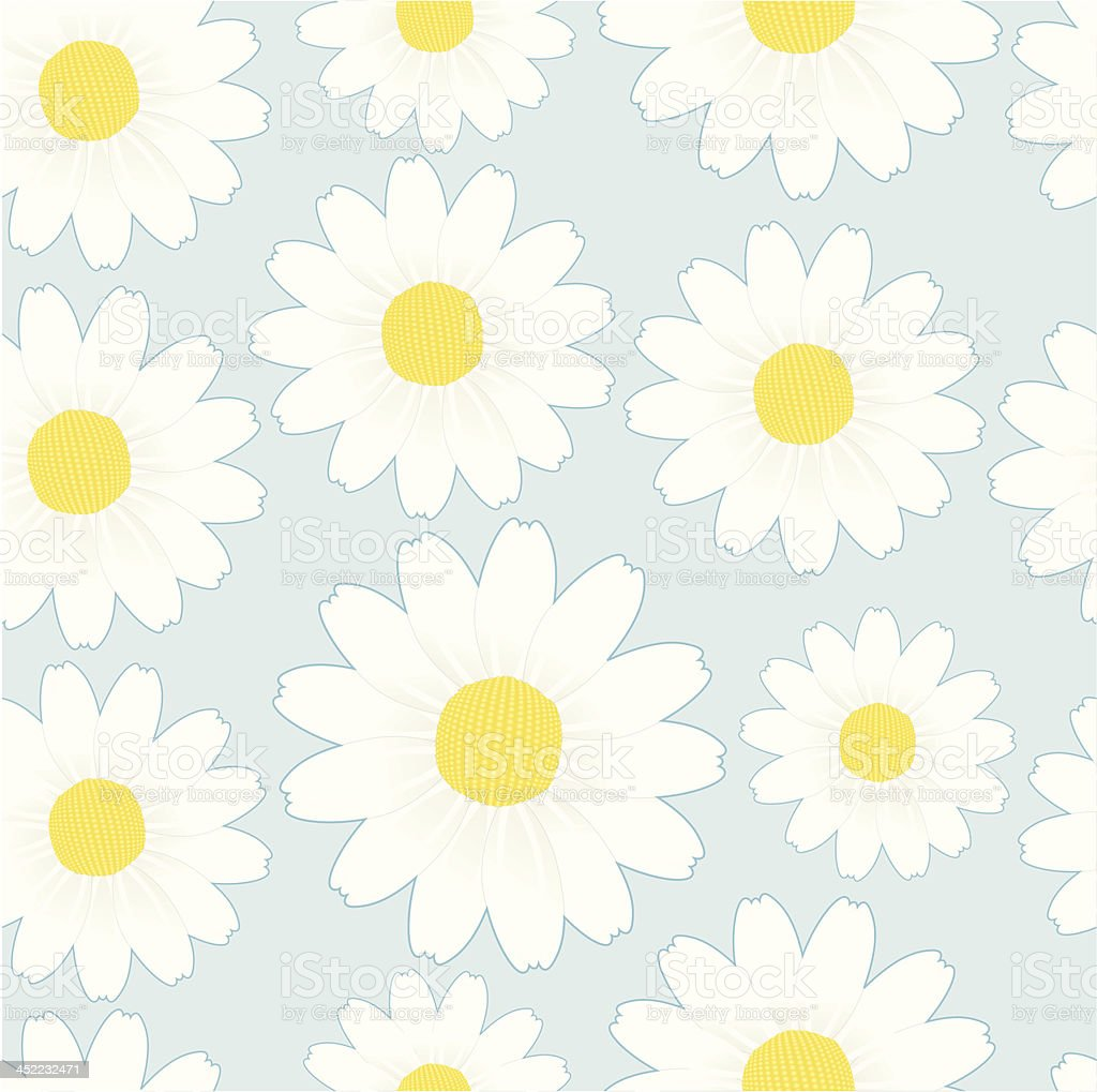 seamless pattern: margueritte / chamomile. royalty-free stock vector art